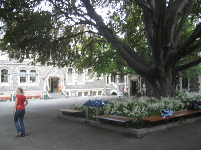 Album: Christchurch; Foto: IMG_1493.JPG